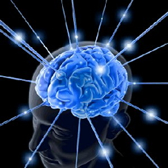 brain with ideas radiating out of it