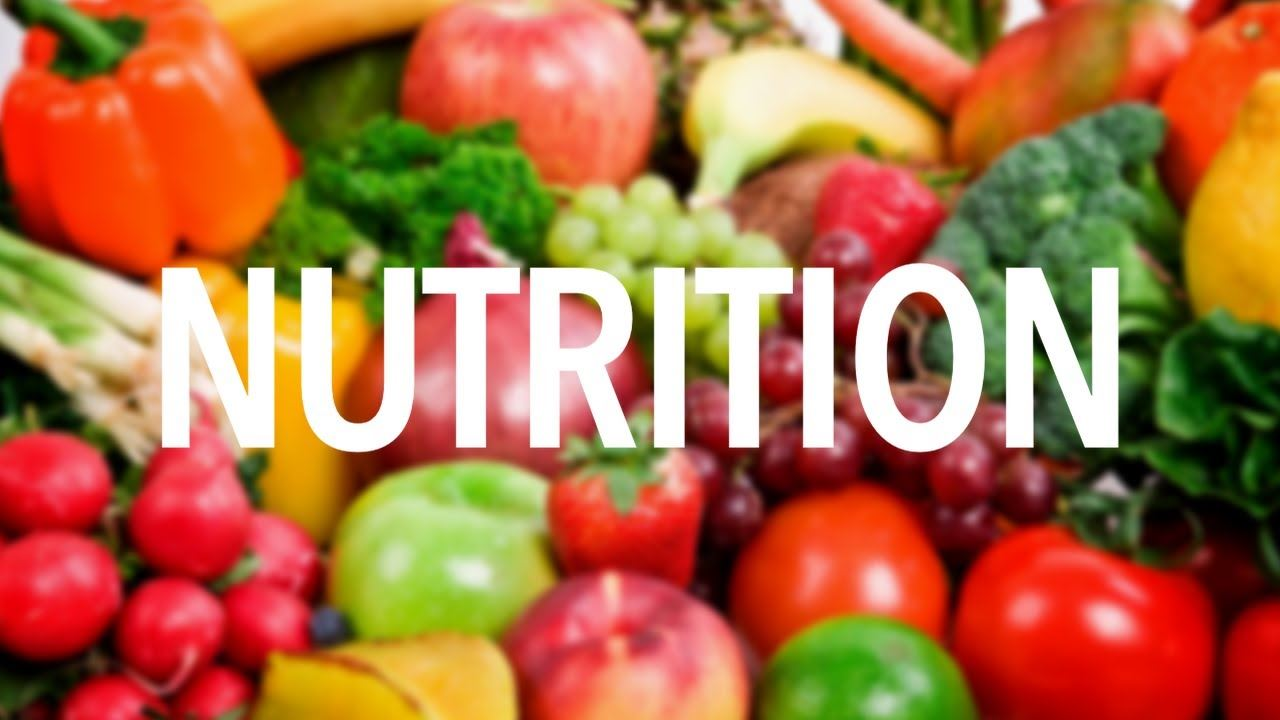 We are asking ALL Arden Families to Please Fill Out This Nutrition Meal Application Form!