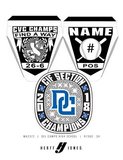 2018 Cougar Baseball Receives Section Championship Rings